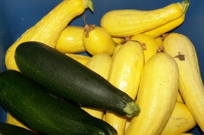 zucchini as pineapples for the winter